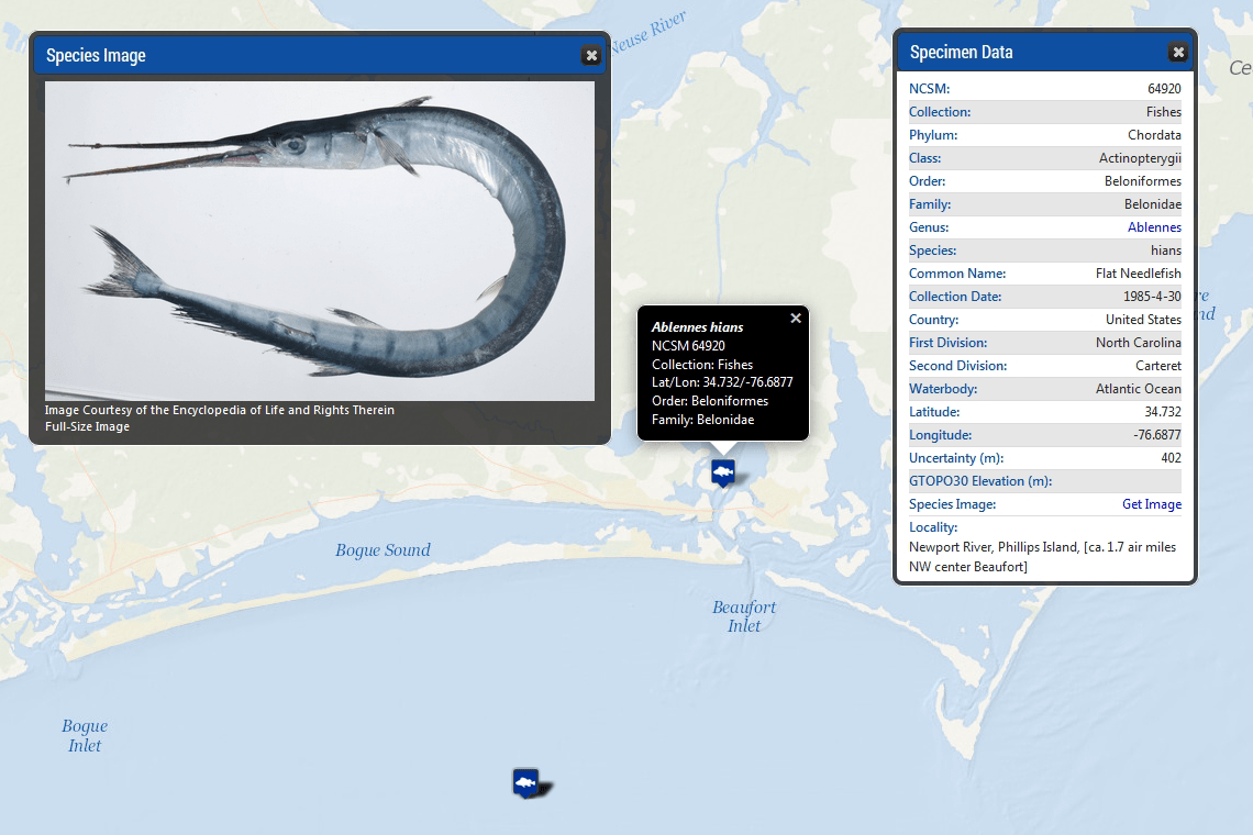 NCSM Species Mapper Screenshot 4