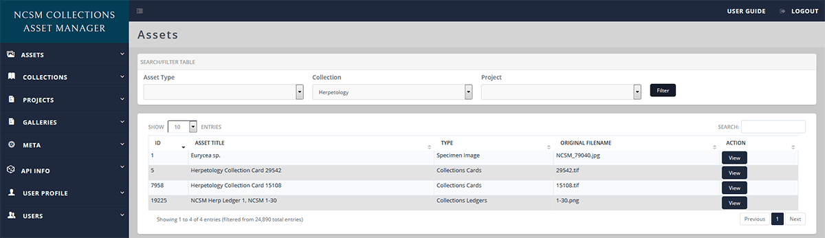 Assets Datatable View