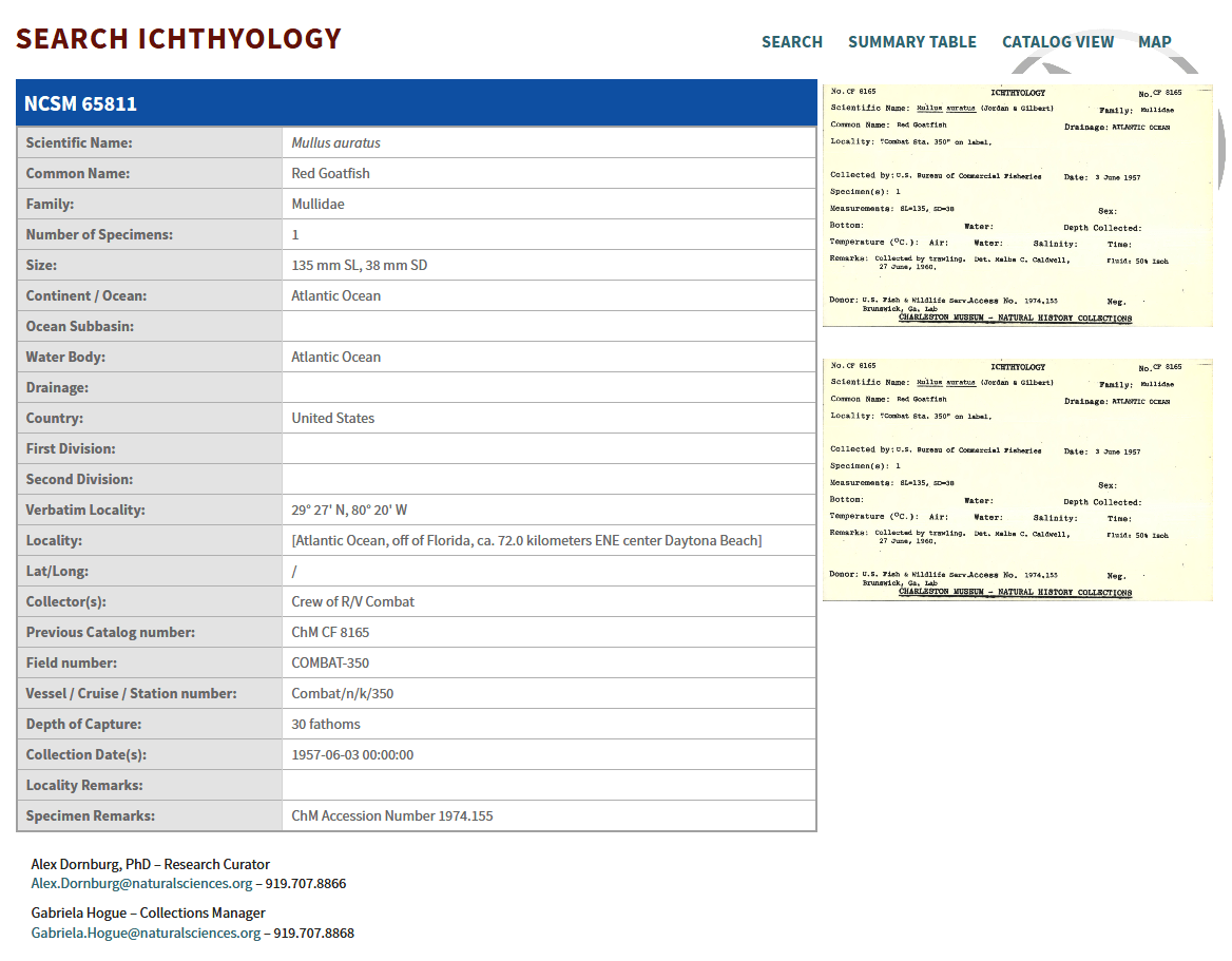 Search Ichthyology Results Specimen View