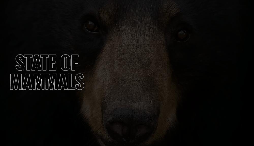 State of Mammals